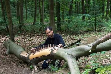 """8.Internat. Waldkunstpfad """"Kunst-Transformationen"""""""