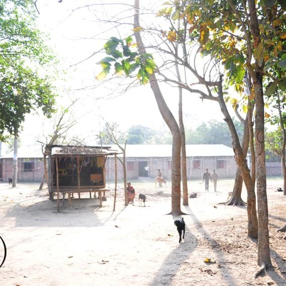 Postcard from Bangladesh